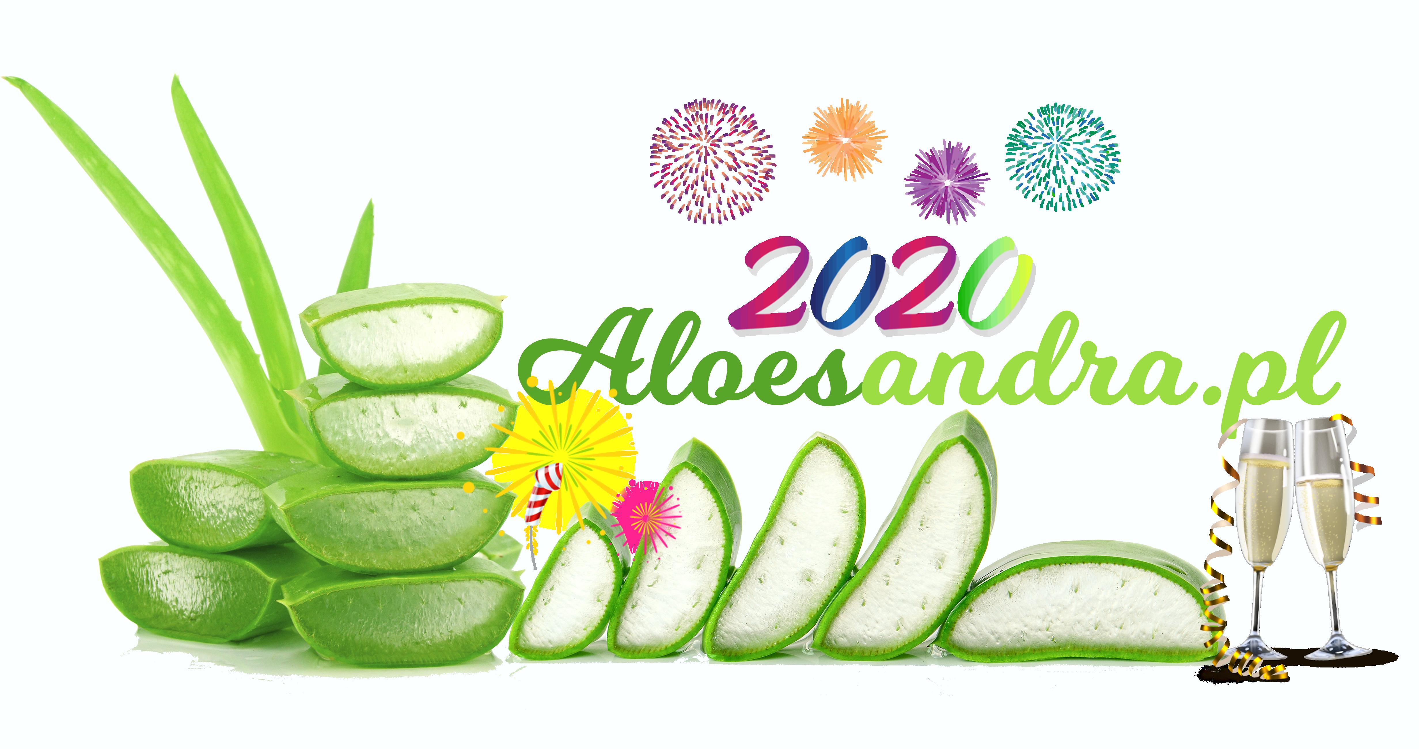 aloesandra.pl